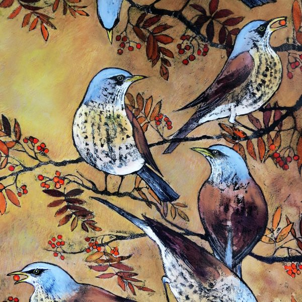 Birds by Sue Allen