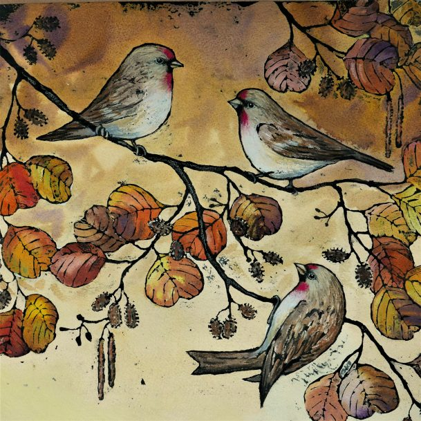 More new Sue Allen birds have arrived in the gallery