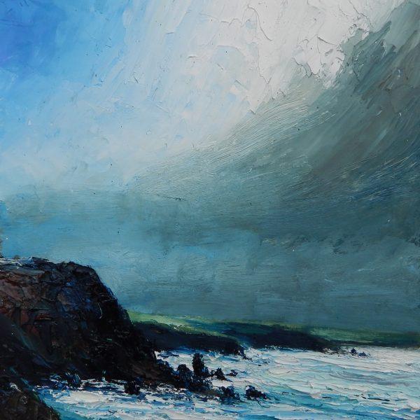 Along the Wild Coast by David Morgan