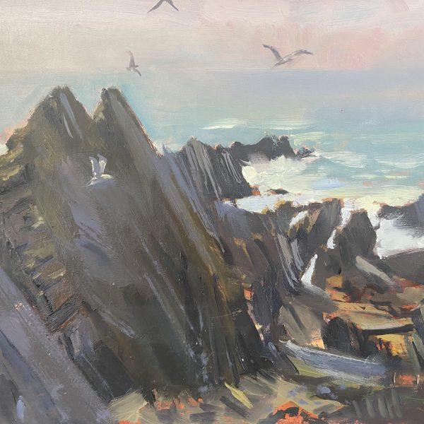 North Devon Rocks