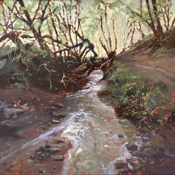 Exmoor Stream