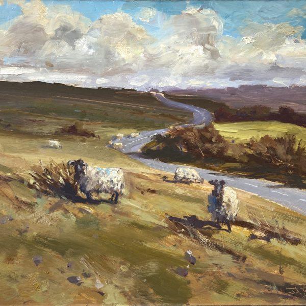 The Road to Simonsbath